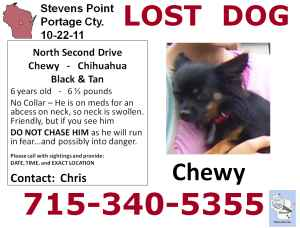 Help find Chewy