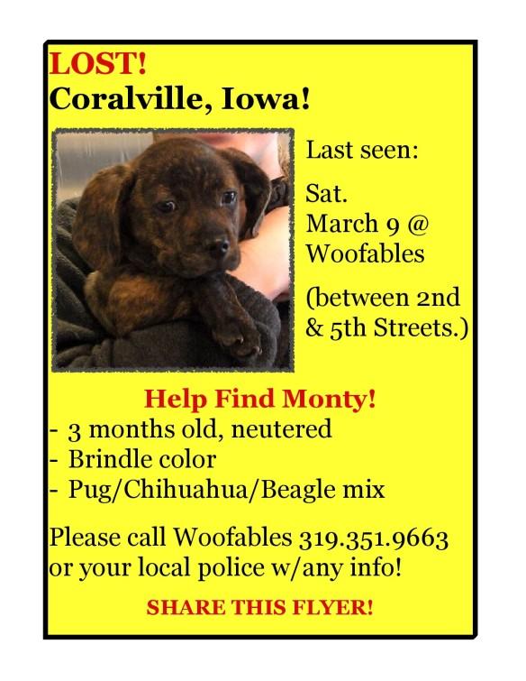 Monty missing in Coralville Iowa