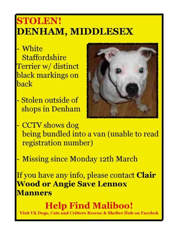 Maliboo stolen in Denham Middlesex
