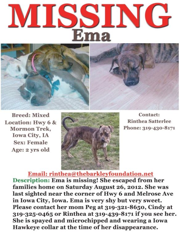 Ema missing in Iowa City