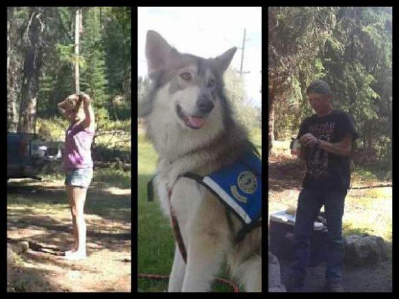 Jalita the service dog stolen in Montana